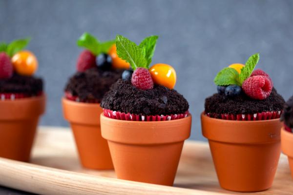 Flower Pot Cupcakes